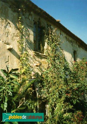Calella - Mas Salvador de Capaspre