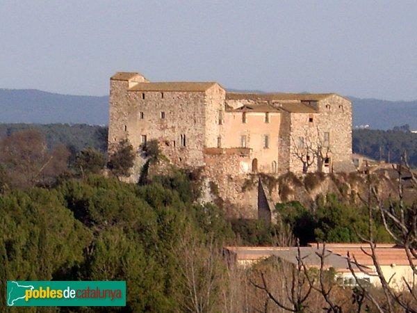 Castell, vista des del NO, una tarda de primavera