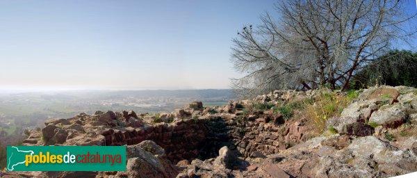 Vista panoràmica des de dalt de la Torre