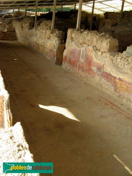 Altafulla - Els Munts - Mosaic del passadís