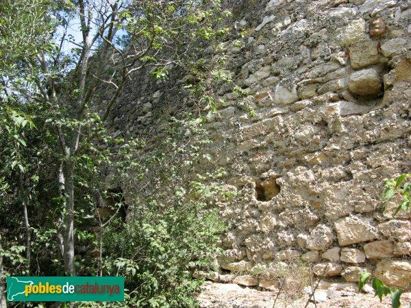 La Canonja - Castell dels Montgons