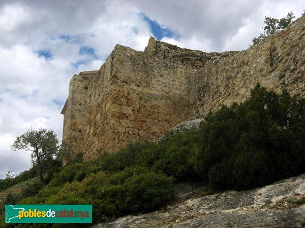 La Pobla de Claramunt - Castell: muralla
