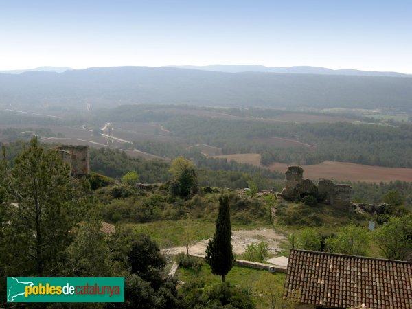 Santa Maria de Miralles - Vista des del castell, mirant al sud