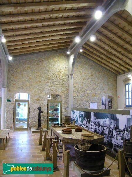 Museu de l'Anxova i la Sal