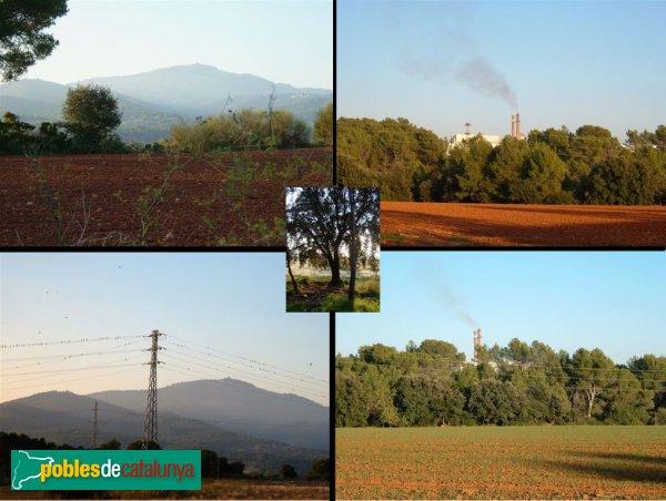 Castellar del Vallès - Entorn del mas de Can Bages