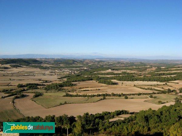 Santa Coloma de Queralt - Panoràmica des del castell d'Aguiló