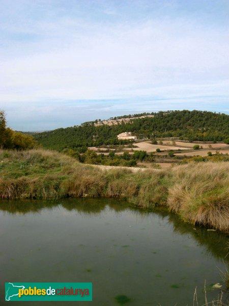 Pontils - Sant Magí de la Brufaganya, de lluny