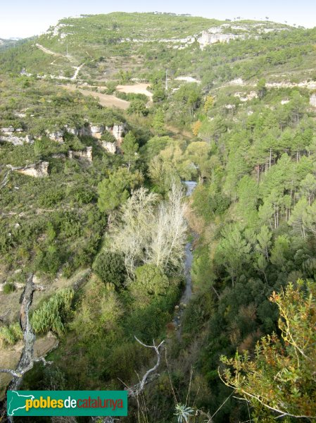 Pontils - El Gaià des del castell de Santa Perpètua