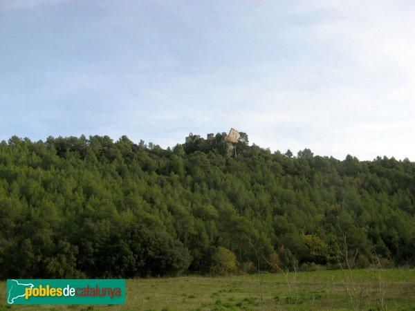 Pontils - Castell i església de Seguer