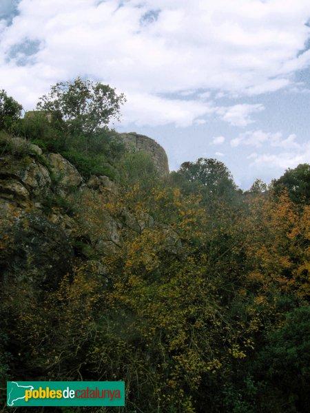 Pontils - Santa Maria de Vallespinosa, l'absis de lluny