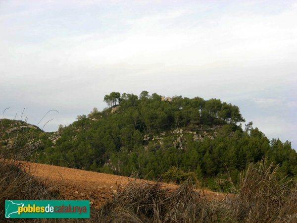 Pontils - El castell, de lluny
