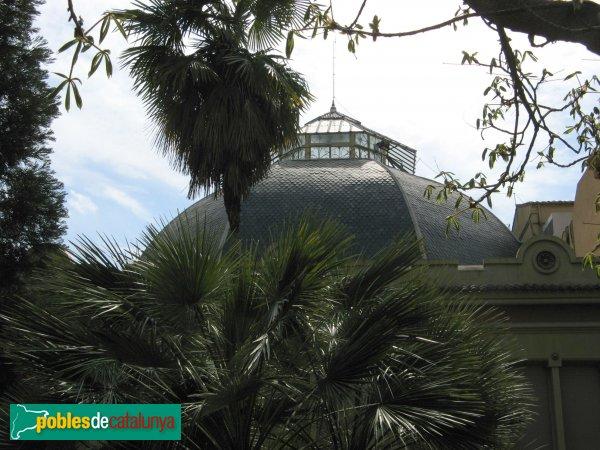 Terrassa - Magatzem Pasqual Sala, cúpula