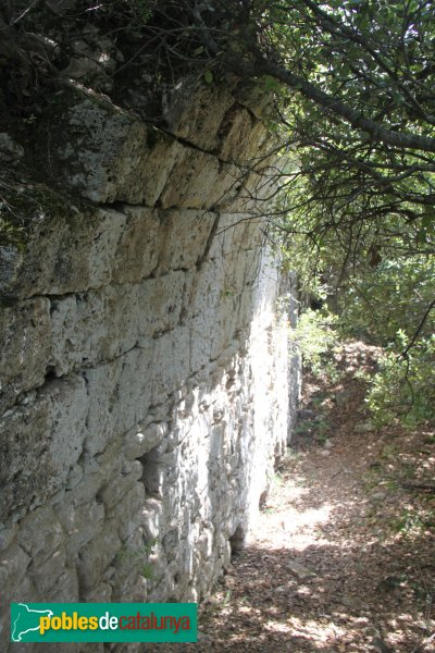 Susqueda - Castell de Fornils