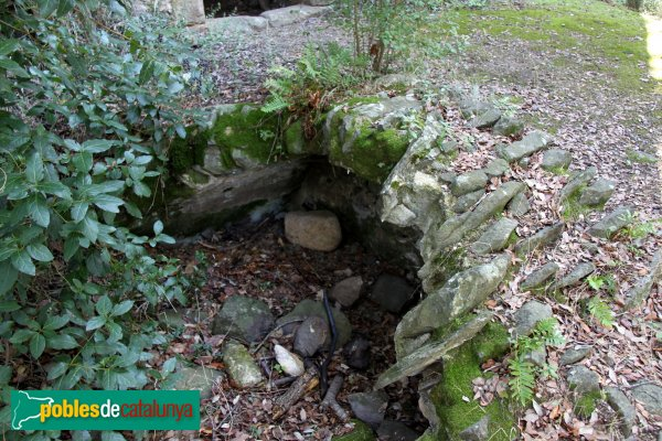 Riudarenes - Castell de l´Esparra, possible cisterna
