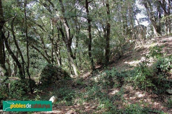 Riudarenes - Castell de l´Esparra