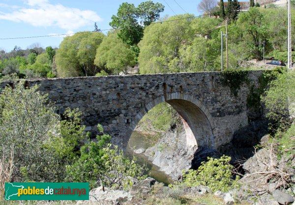 Rabós - Pont