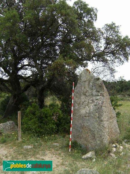 Capmany - Menhir del Quer Afumat I J