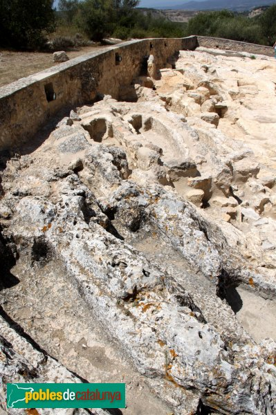 Olèrdola - Necròpolis