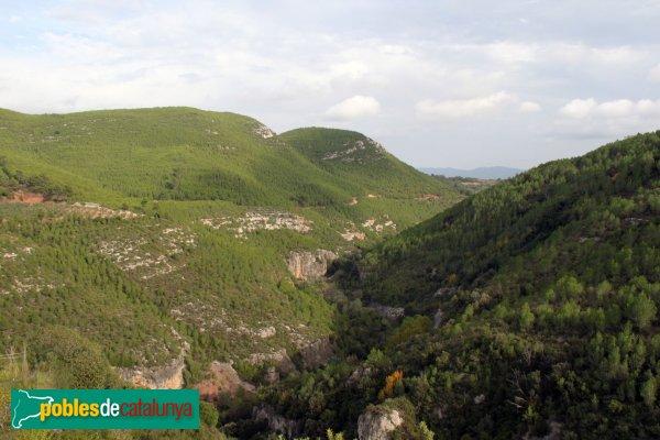Mediona - Panoràmica des del Castell