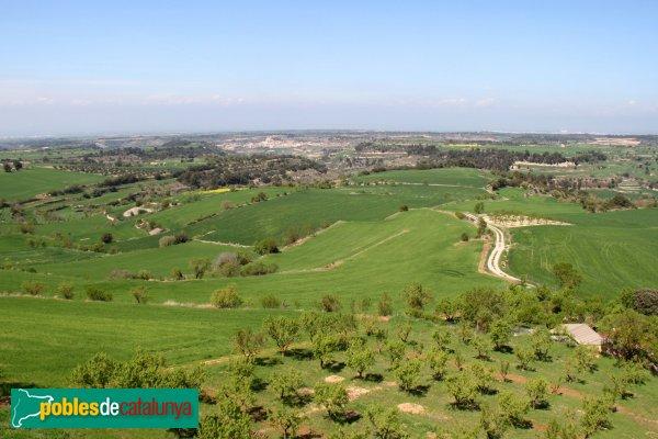Montoliu - Panoràmica des del Castell de l'Ametlla