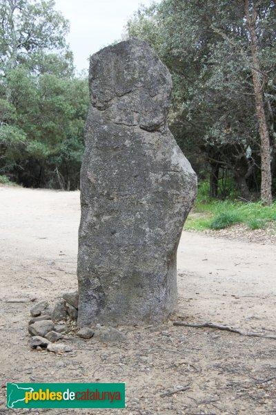 Maçanet de Cabrenys - Pedra Dreta