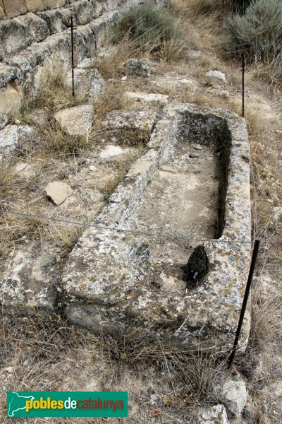 Cervera - Sant Miquel de Tudela, tomba antropomòrfica