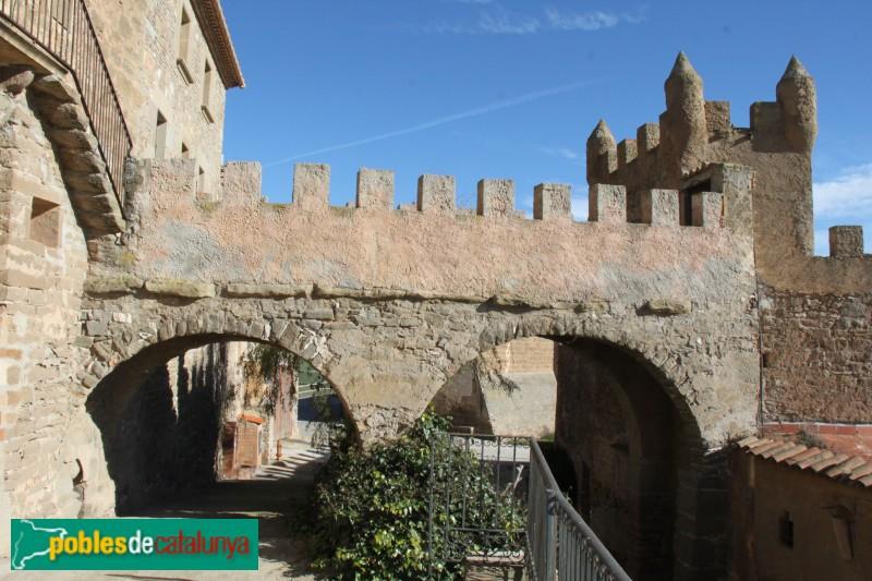 Plans de Sió - Portal i muralles de l'Aranyó