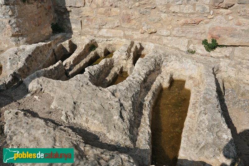 Poblat d'Olèrdola - Necròpolis