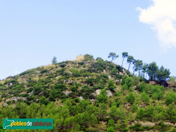 Olivella - Turó del Castell - PdC 2006